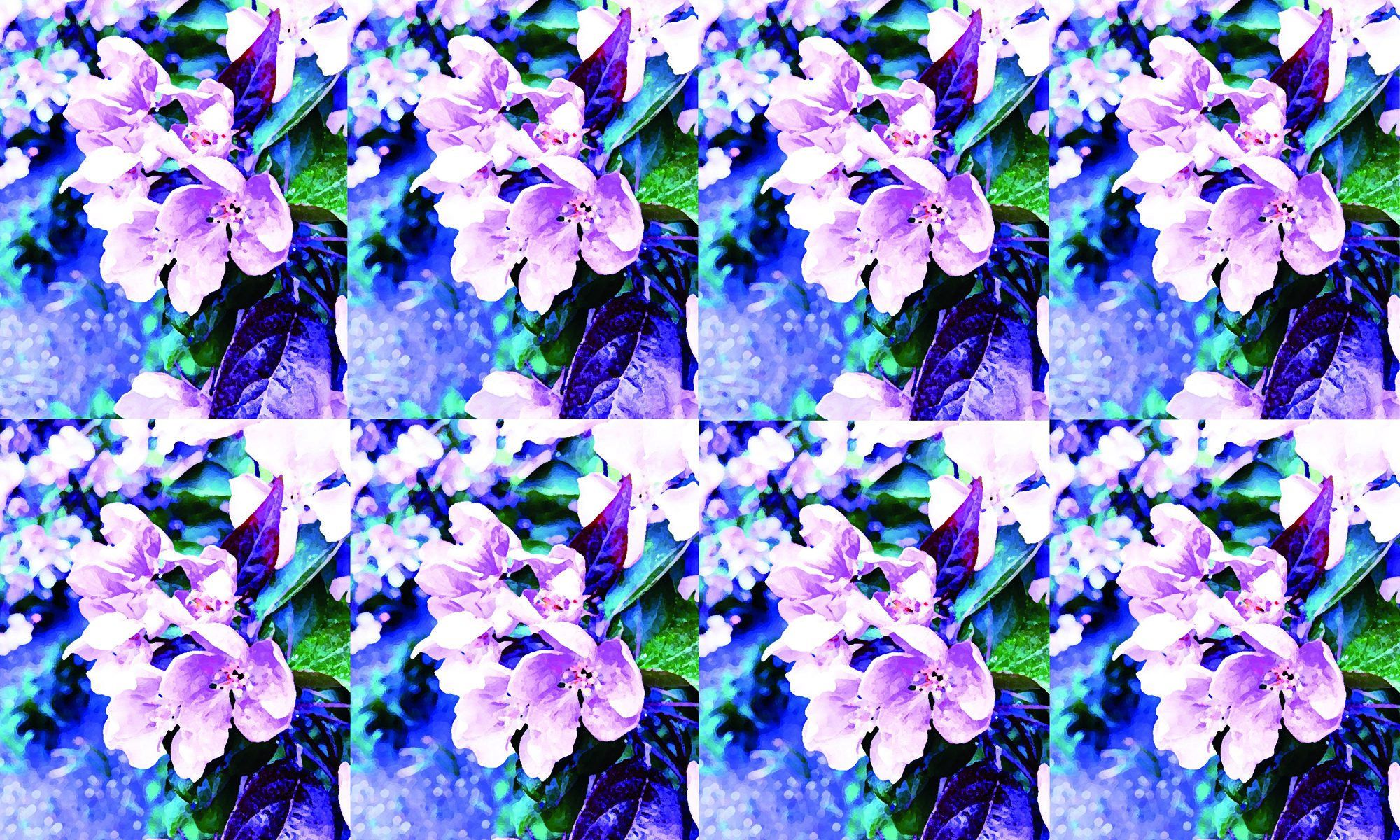 Photo edited floral artwork M